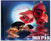 M*Cuadro 3 Rosas Zaira