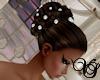 [VS]Pearl Wedding BRN