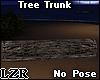 Tree Trunk *Tronco