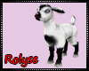 RL/ Baby Goat