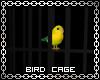 Bird Cage with sound
