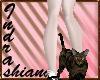 avatar con gato