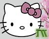Kitty Transparent Deco