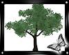 !! Spring Tree Animated