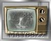 May*Old TV