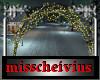 christmas lights arch
