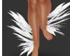 FEATHER LEG WHITE