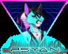 🦩 Support Psyan