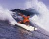 Gino's Surfboard