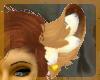 Leo ears v1