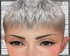 Fade Hair
