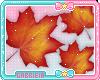 Kids Autumn Leaves