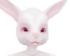 f anyskin bunny ears B