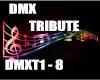 DMX Tribute