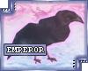 {e.e} (Left) Black Crow