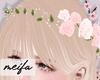 🌸 Rose Crown Pink
