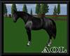Walikng Horse