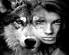 Wolf Kid ScaledTrampolie