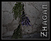 [Z] TAL Herbs on Rope