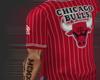 Starter Bulls Jersey F