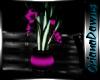 Night Plant 1