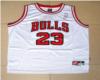 jordan Bulls jersey 23