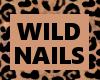 KP wild fingers 1