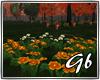 *Autumn*Flowers