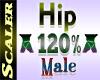 Hip Resizer 120%