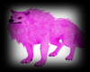 Pink Wolf with Poses