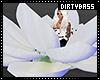 !B Serenity Flower