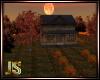 Autumn Little House