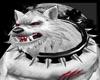 Twilight White Wolf