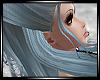 *C Ash.Blue.Silvestra..