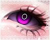 Dusk |Purple
