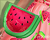 Spring Watermelon Purse