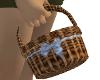 Easter Basket F