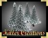 (Y71)  Winter Pines