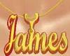 james necklaces