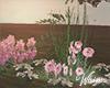 Romantic Spring Flowers
