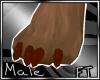 (M)Brwn Fur Paws [FT]