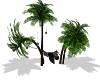 [DM] Palm hammock