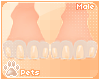 [Pets] Kinx | feet M