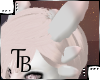 T: Albino Shark Ears