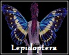 Lepidoptera Elf Wings