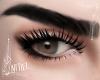 Delia Eyebrows no lashes