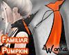 W° Pumpkin 🎃Cape