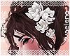 Hair Lilies |White