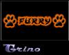 *Claw*Furry Orange*Claw*