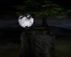 !Elven Moon Hideaway
